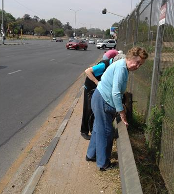 Elderly residents take up Mashaba's call to clean